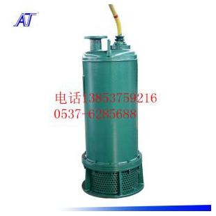 加油站加氣站WQB25-22-4防爆污水泵