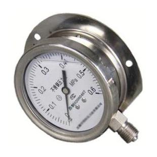 无锡径向带边耐震不锈钢压力表