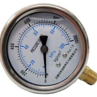 耐震双刻度压力表刻度单位