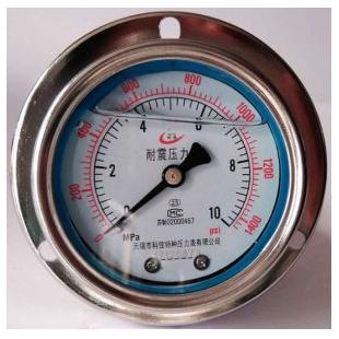 不锈钢壳轴向带边嵌装抗震压力表