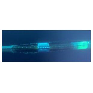 挪威Scantrol公司Deep Vision拖网视频系统