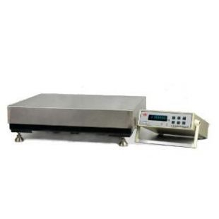 ESK系列2-5吨电子天平