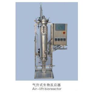 气升式不锈钢生物反应器