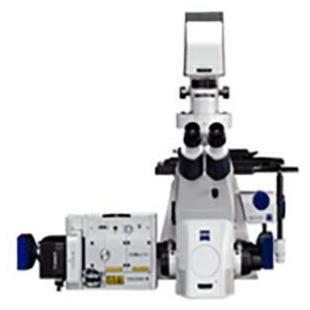 Cell Observer SD細胞顯微鏡