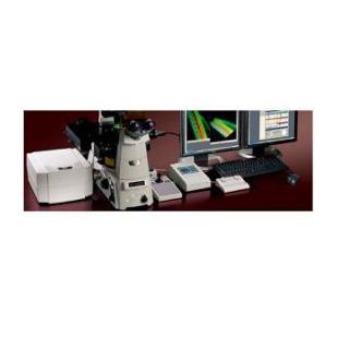 A1si+A1Rsi+激光共聚焦顯微鏡