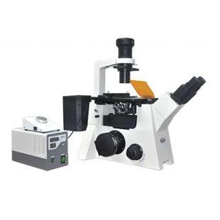 MSHOT倒置熒光顯微鏡MF53
