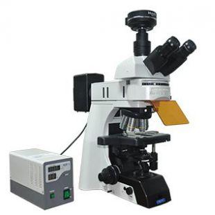 MSHOT研究级荧光显微镜MF43