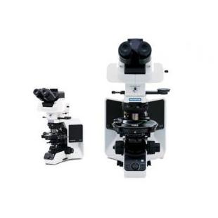 奥林巴斯偏光显微镜 BX53-P