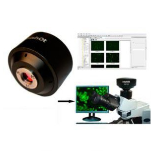 MFISH 荧光分析系统