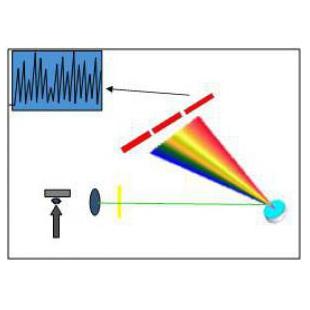 ICP-900型电感耦合等离子体发射光谱仪