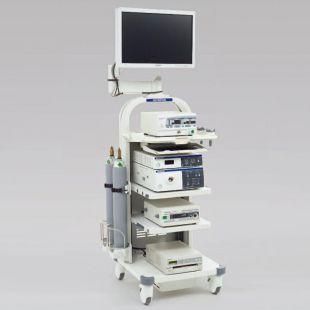 奥林巴斯电子腹腔镜系统OTV-S190