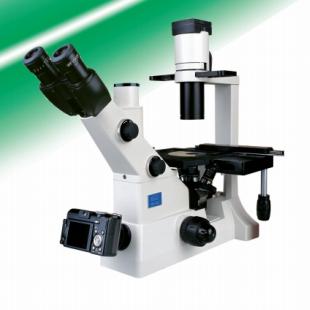 江南熒光顯微鏡XD-202