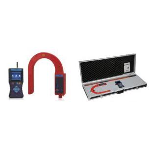 DS300无线高低压大电流表