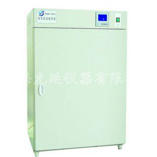 允延DRP-9052电热恒温培养箱