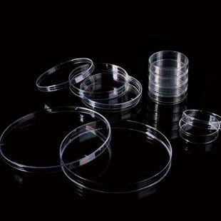 山东巴罗克  细菌培养皿   66-1501