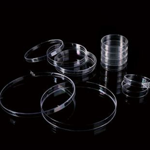 山东巴罗克  细菌培养皿  66-1701