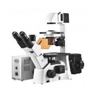 倒置荧光显微镜AE31荧光