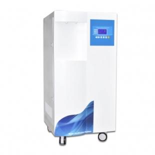 汀兰综合型超纯水机