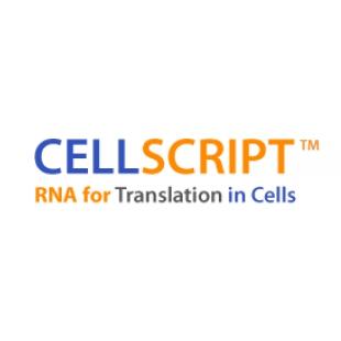 MessageMAX™ T7 ARCA-Capped Message Transcription K