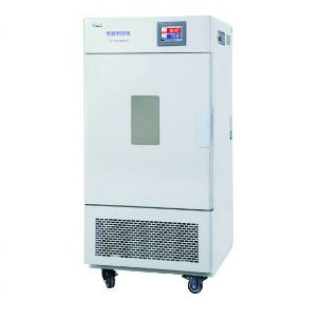 上海一恒恒温恒湿箱BPS-250CH可程式彩色触摸屏