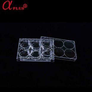 青岛金典(原阿尔发)6孔悬浮细胞培养板 20个/箱