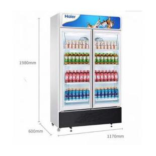 海尔商用展示柜冷藏保鲜柜啤酒冷饮冷柜立式双门展示柜玻璃门冰柜风冷无霜