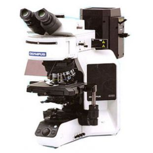 奥林巴斯研究级显微镜 三目