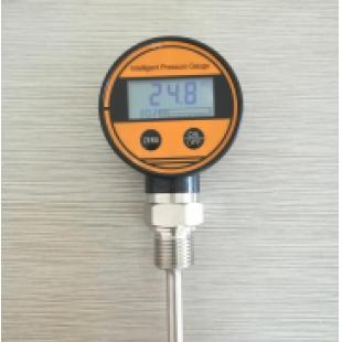 西安新敏厂家直销数字温度表