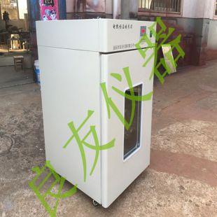 金坛良友 电热培养箱 DHP-9052