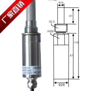 罗卓尼克露点探头传感器HC2-DP两路模拟输出温湿度计正品厂家包邮