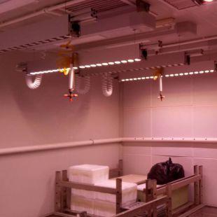 智能植物冷热处理室