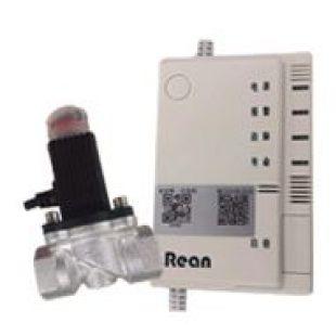 RBJ-II 型家用燃氣報警器