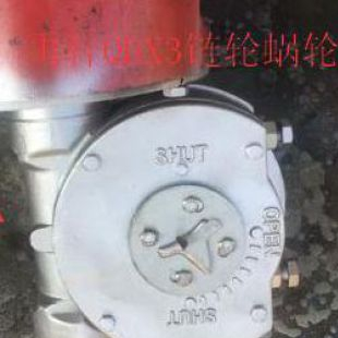 QDX3-5煤化工阀门带链轮蝶阀减速机