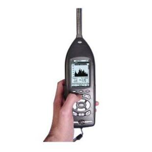英国赛那斯 LxT工业场所噪声分析仪