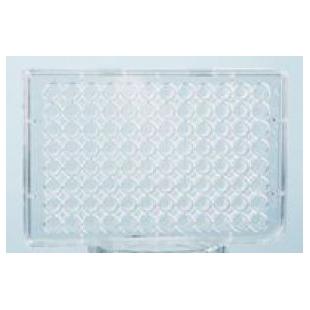 高结合力酶标板—不可拆卸 透明96孔板