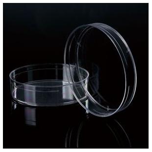 巴罗克  细菌培养皿60mmx15mm多种规格,透明500个/箱66-1560