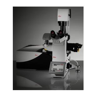 德國Leica TCS SP8激光共聚焦顯微鏡