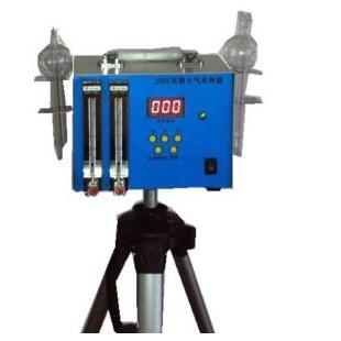 無有儀器雙路大氣采樣器WYT-2000