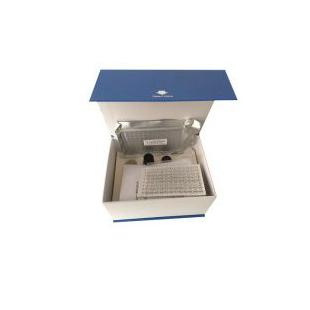 大鼠糖化血红蛋白(GHb)ELISA检测试剂盒