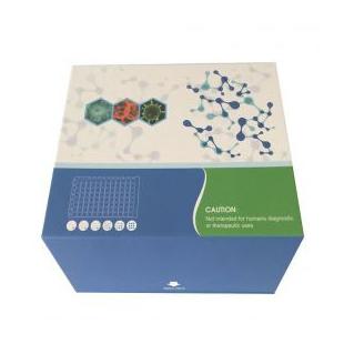 人抗信号识别颗粒抗体(SRP)ELISA检测试剂盒