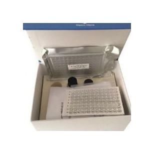 豬主要組織相容性復合體Ⅲ類ELISA試劑盒