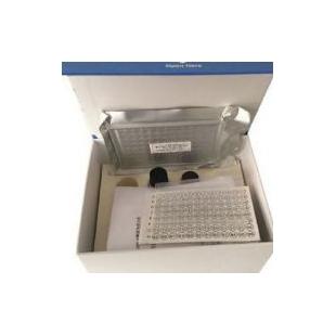 綿羊CXC趨化因子受體2(CXCR2)ELISA試劑盒