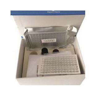 犬肌钙蛋白Ⅰ(Tn-Ⅰ)ELISA检测试剂盒