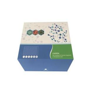 人类重组ph20(spam1)ELISA检测试剂盒