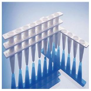 Roche罗氏PCR仪用荧光定量PCR管0.1ml