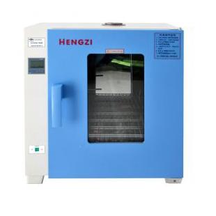 HGZN-II-43电热恒温烘箱 干燥箱 灭菌箱 融蜡固化试验箱 新诺