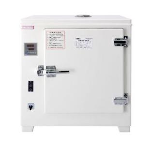 HGZF-101-0电热鼓风干燥箱 恒温烘箱 烘干实验 新诺