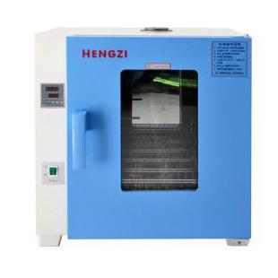 HGZF-II-101-0电热恒温鼓风干燥箱 实验室烘箱 新诺