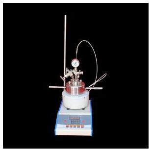 上海新诺WXGY-10ML 微型钛材高压反应釜 水江苏快三走势图快3一定牛热合成反应釜