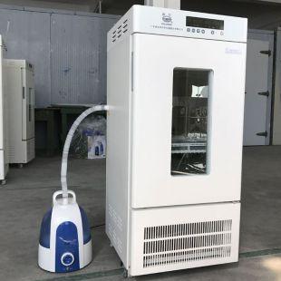 霉菌恒溫試驗箱LRH-200-MS霉菌培養箱 種子箱